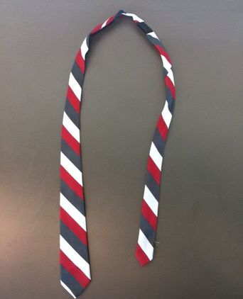 Flight Service Director's tie